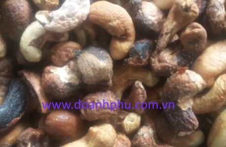 Cashew nut residues